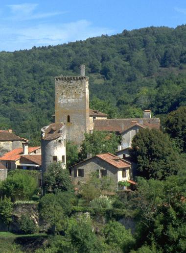 © Vestiges du Fort médiéval à cardaillac