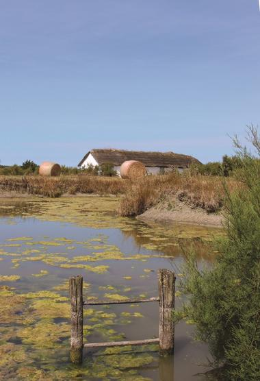 Vendée des Iles