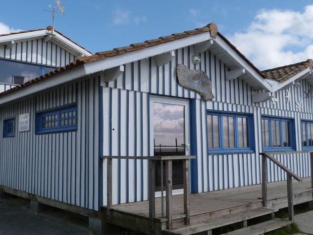 Cabane-bleue-aux-artistes--9--799x600.jpg