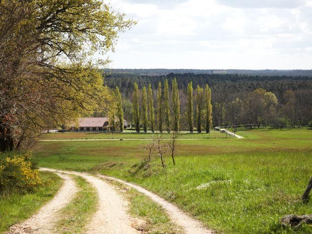 Bernos-Beaulac---randonnee---panorama.jpg