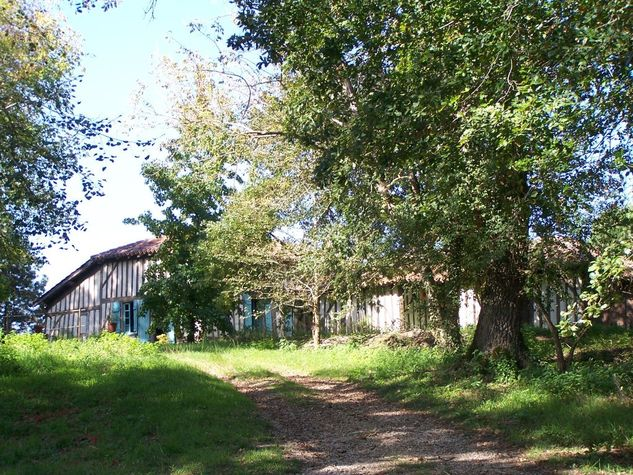 Maison-Landaise-Belhade-CM--1-.jpg