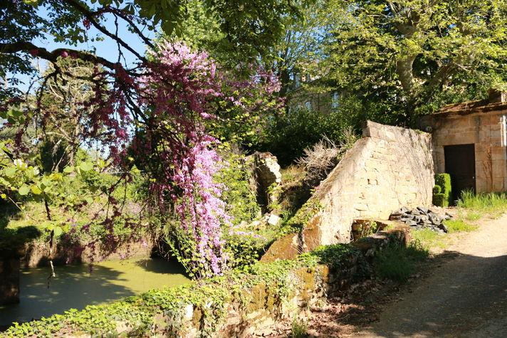 bassin en bordure du château.jpg
