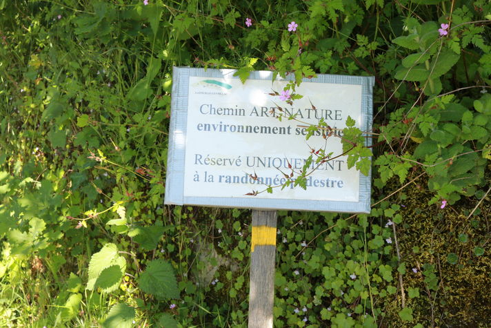 Chemin Art et Nature.JPG