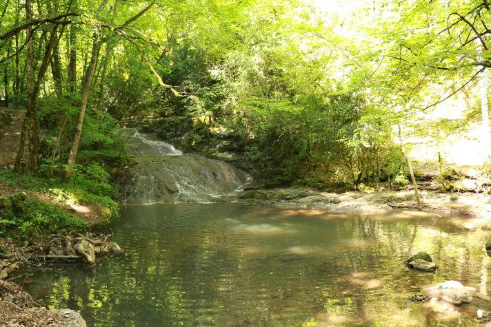 Le ruisseau du Toyre.JPG
