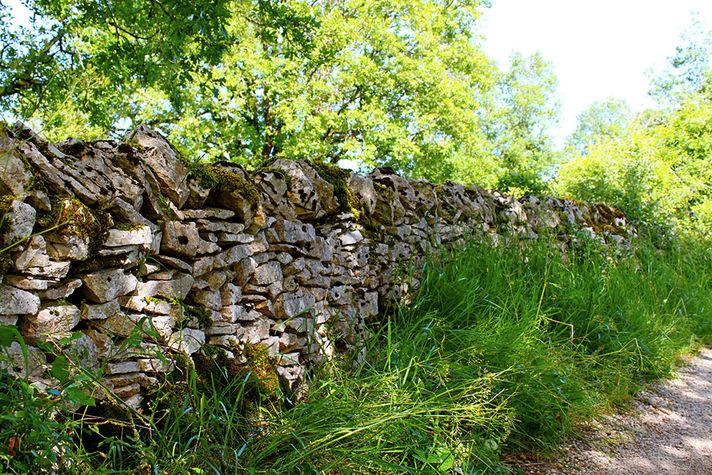 Mur de pierres sèches.jpg