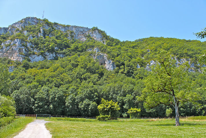 Chemin-final-3.jpg