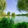 Plan d'eau du Monteuil © Olivier Douard (21).jpg