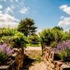 Des espaces de mémoire, comme le jardin des trois frères Kaas.jpg