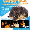 28.03.20 Carapace.jpg