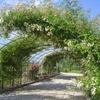 jardin botanique  jardin botanique.JPG