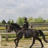 Ferme du Canal & Gite Equestre