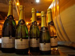 See more information about Champagne Vincent Bennezon