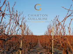 See more information about Champagne Charton-Guillaume