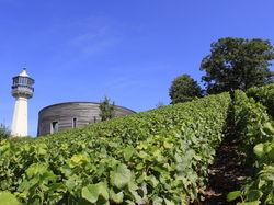 Siehe seite von Le Phare de Verzenay - Musée de la Vigne