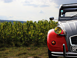 See more information about À l'Allure Champenoise - Guided tours