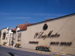 See more information about Champagne P. Louis Martin