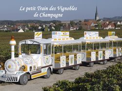 See more information about Le Petit Train des Vignobles de Champagne