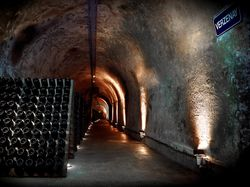 See more information about Champagne G.H. MUMM