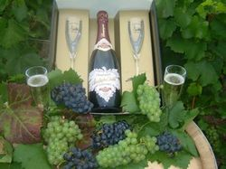 See more information about Champagne Christophe Varlot