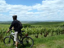 See more information about L'Échappée Bulles - Bicycle tours