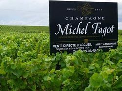 See more information about Champagne Michel Fagot