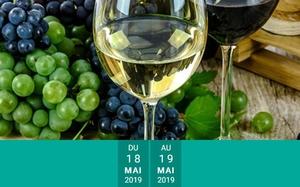 18.19.05 salon des vins.JPG