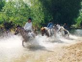 RS10 Equitation.jpg