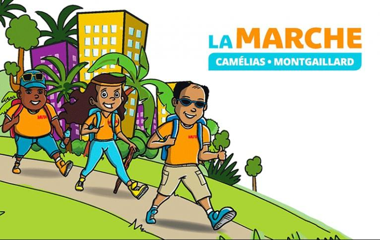 affiche marche camélias montgaillard.jpg