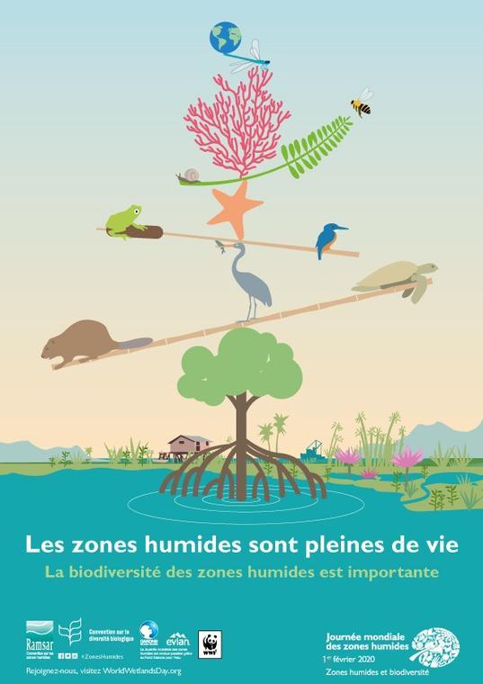 affiche journée mondiale des zones humides.jpg