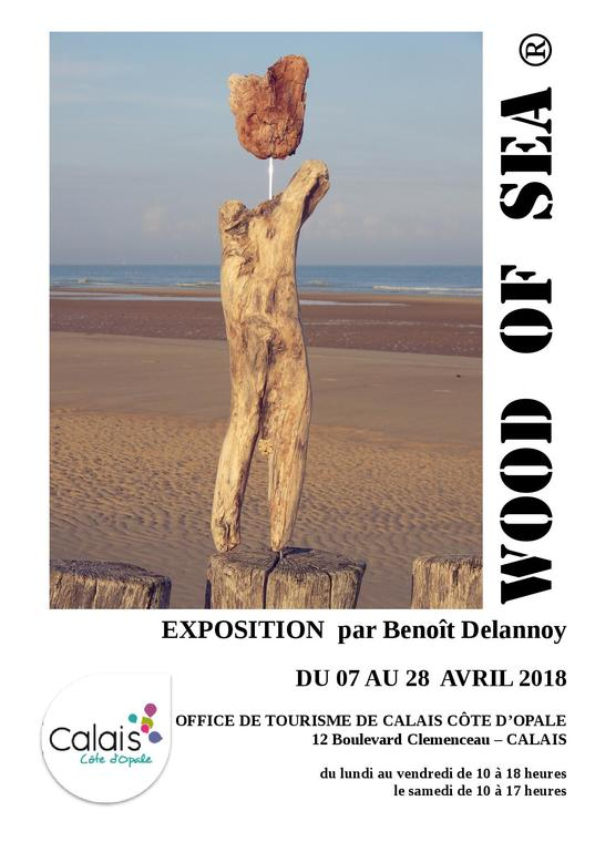 EXPO WOOD OF SEA 7 au 28 avril.jpg