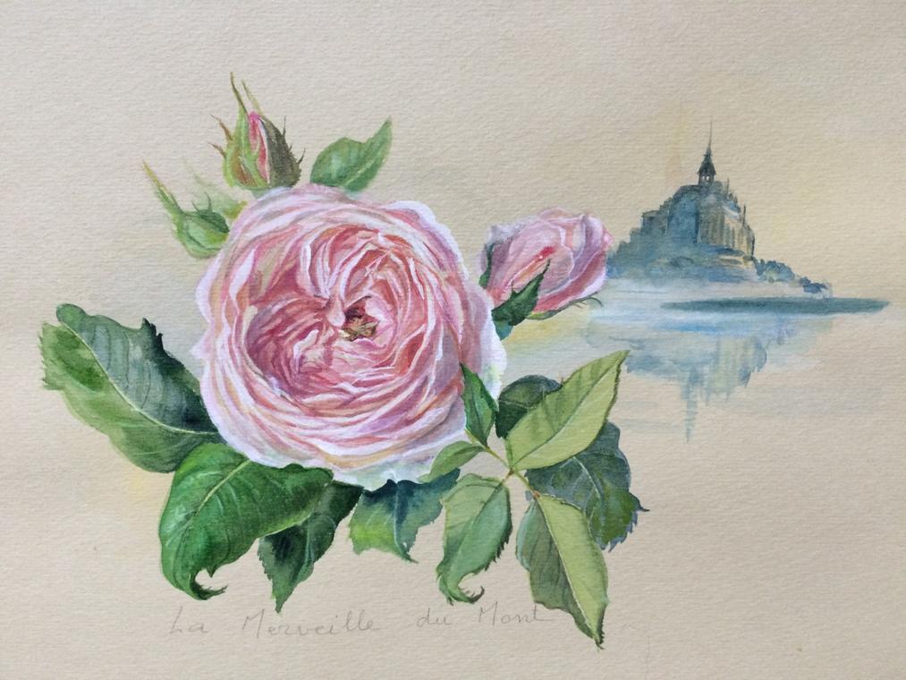 Les contemplatives - Maison Roses thé.jpeg