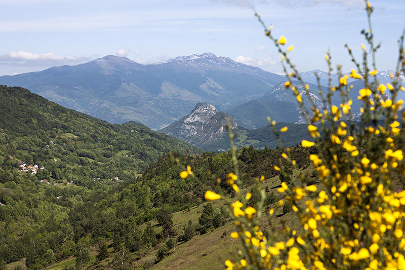 vue_du_mont_fourcat_depuis_la_vallee_saurat.jpg