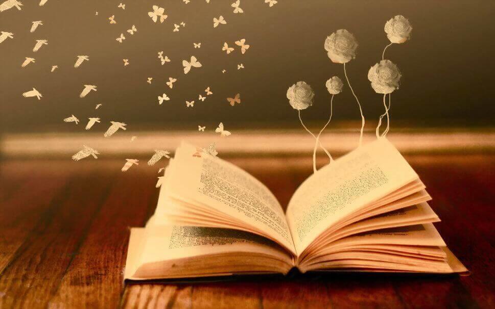 livre-ouvert-.jpg