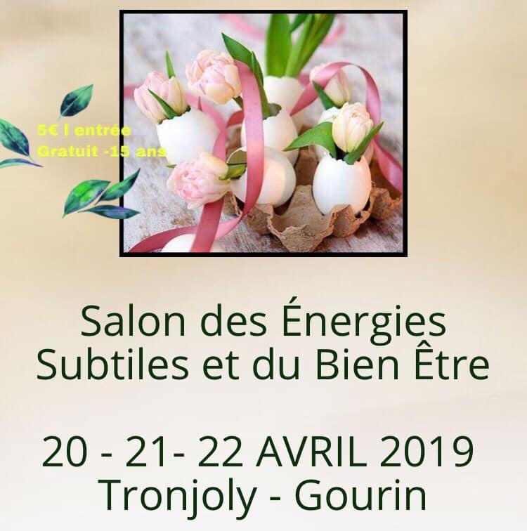 Salon_Energies_Gourin_Avril2019.jpg