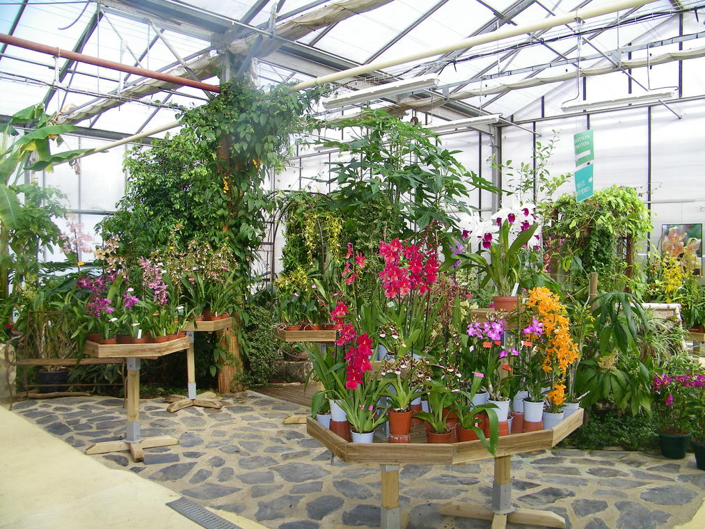 L'Orchidium.JPG