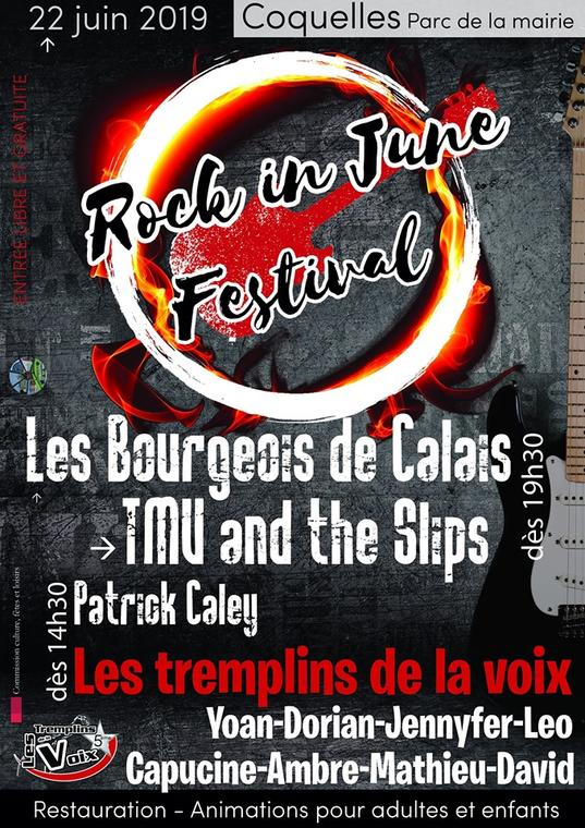 rock in june festival 22 juin.jpg