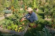 atelier le club des jardiniers