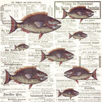 repas sardinade