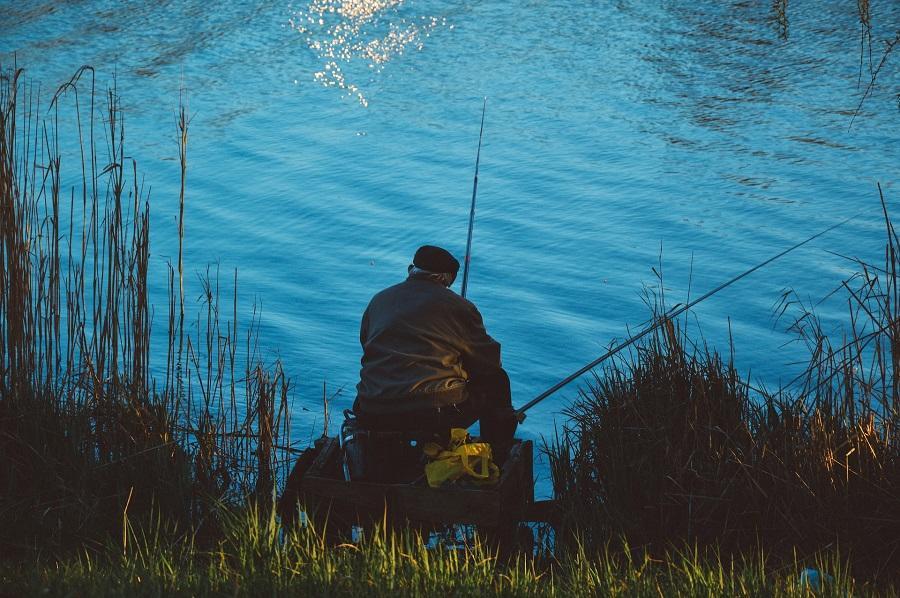 fishing-931991_1920 pêche bis