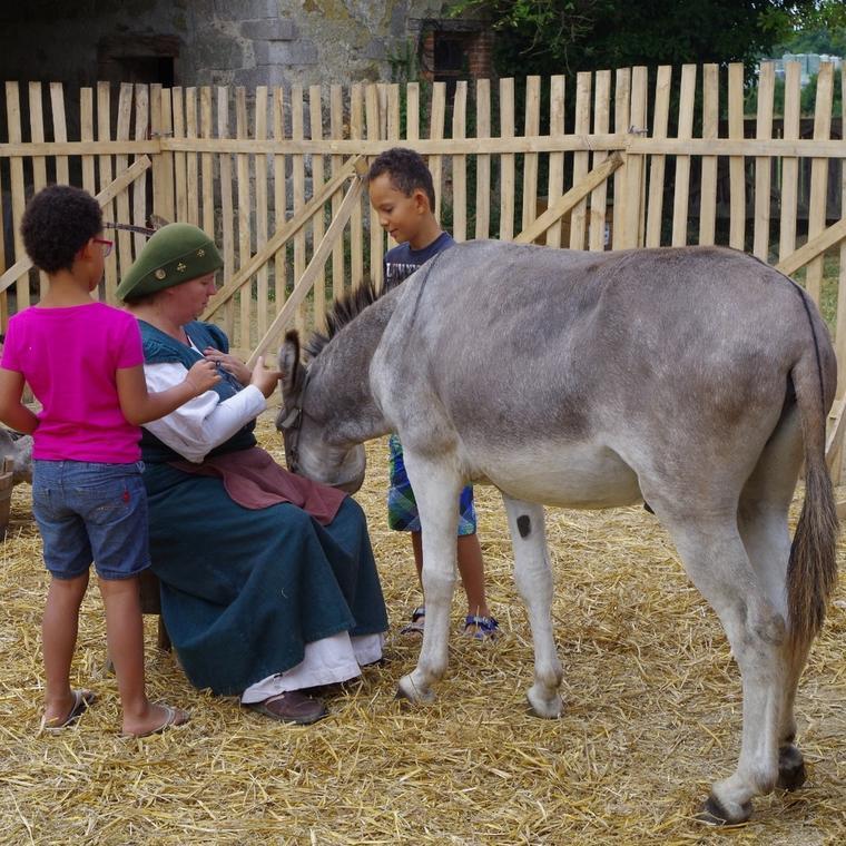 200815-saveurs-animalieres