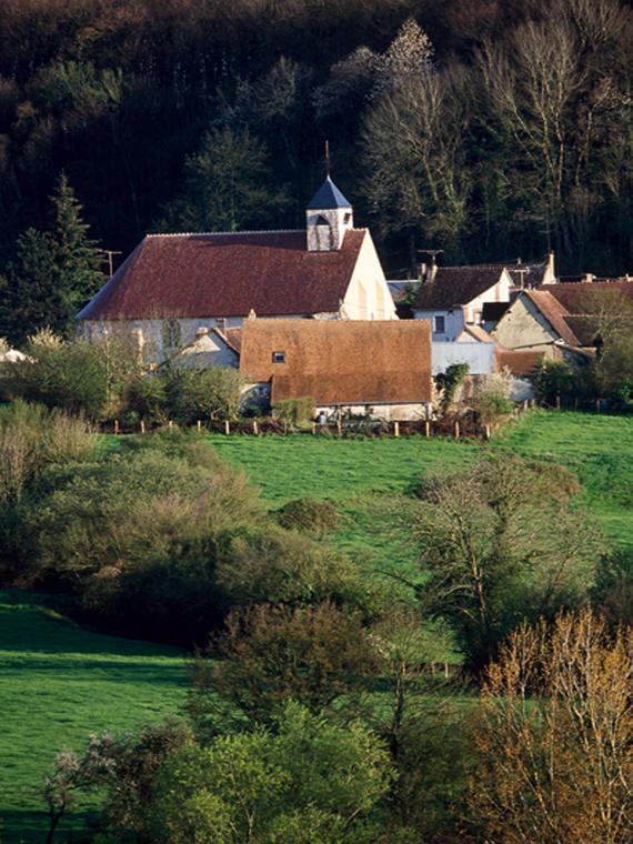 Bois et châteaux - Authon-du-Perche