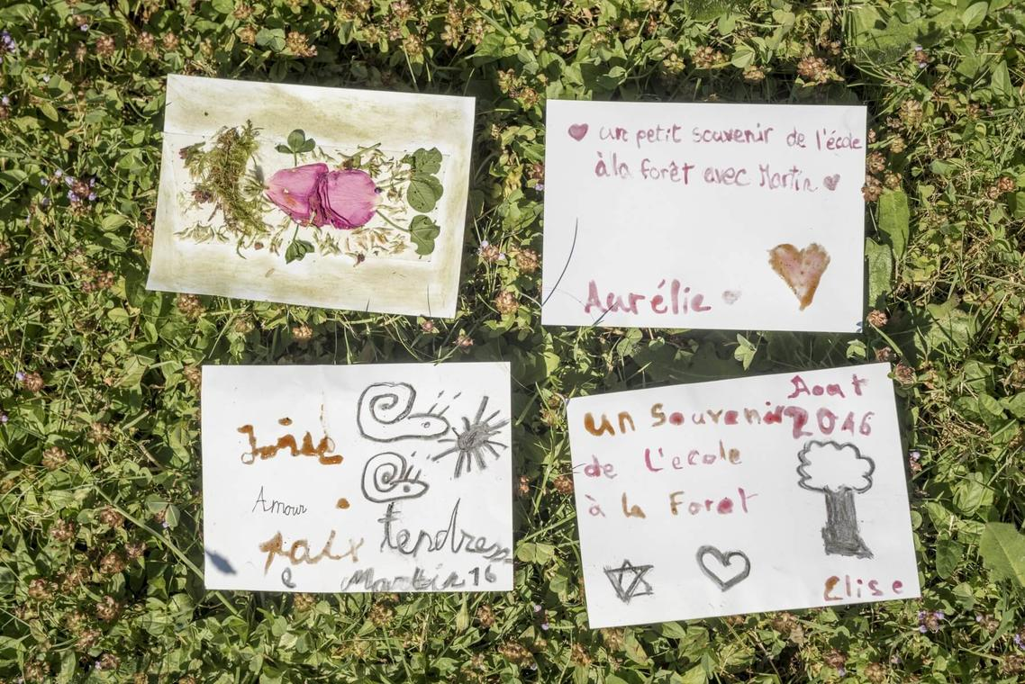 1-10-Cartes-postales-de-la-nature-Timo-Ullmann-1798x1200