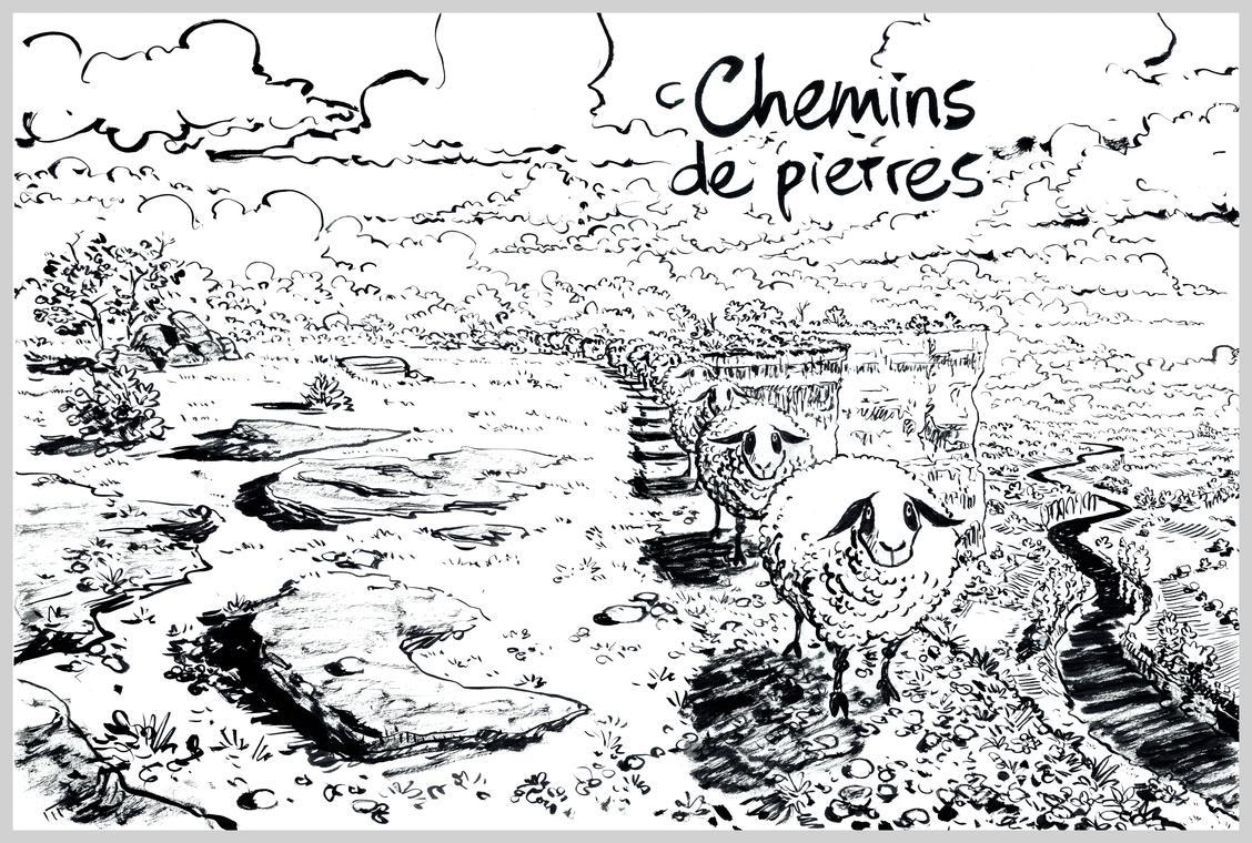 1juin_Chemins de pierres_Troubs