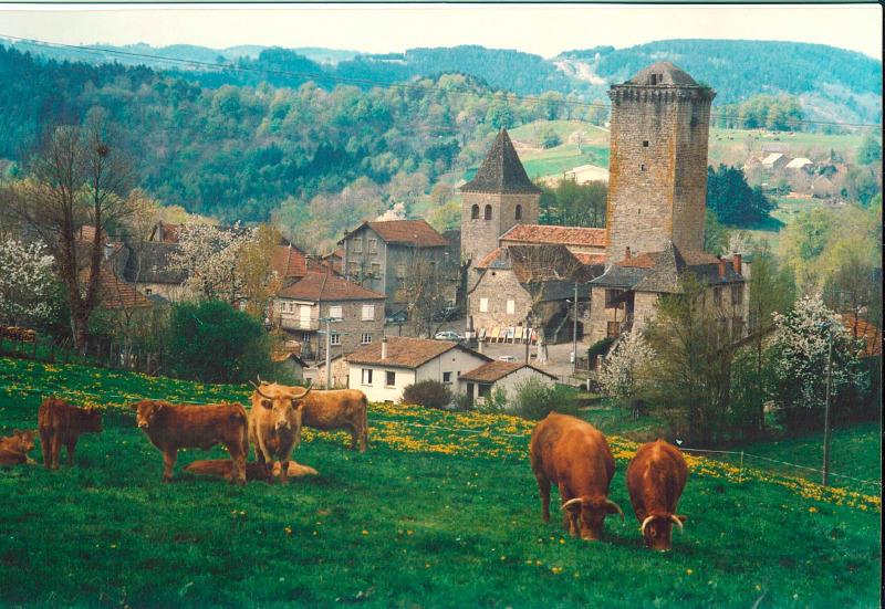 Teyssieu - Tour Médiévale XIIIé s.