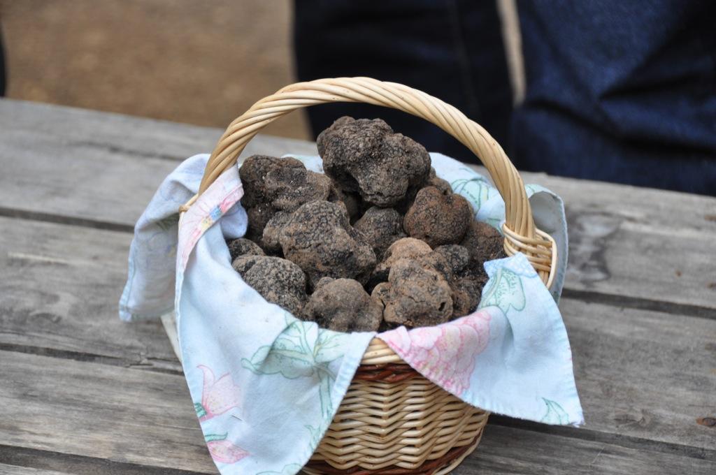 27-Panier de truffes Lot Tourisme-Christiane Roques