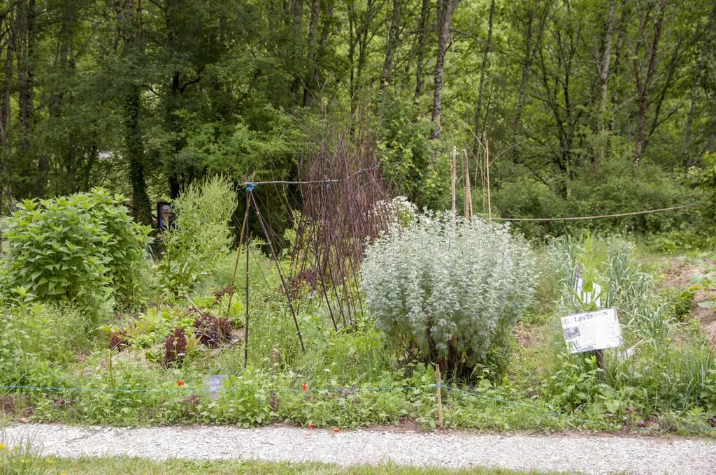 Allees-ouvertes-Jardin-Bourian