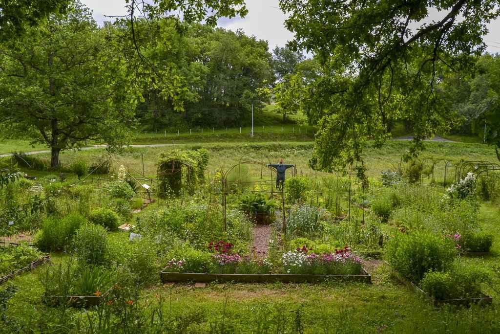 Vide-jardin-Jardin-Bourian