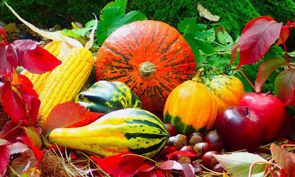 autumn-2851907-1920