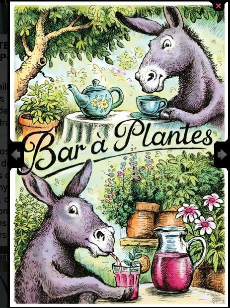 bar à plantes