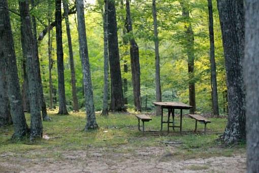 picnic-table-837221__340